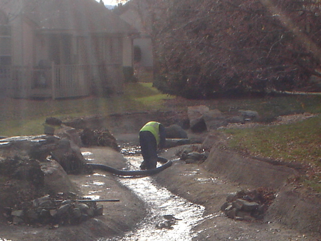 Pond Maintenance Different Types Of Water Color